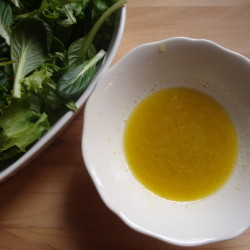 Whole Grain Mustard and Apple Cider Vinegar Salad Dressing